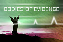 Bodies Of Evidence (CD Set)
