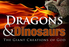 Dragons & Dinosaurs (Booklet)