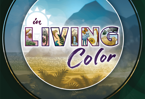 In Living Color: The Curriculum of Creation