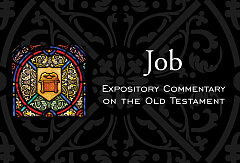 Job Expository Commentary On The Old Testament